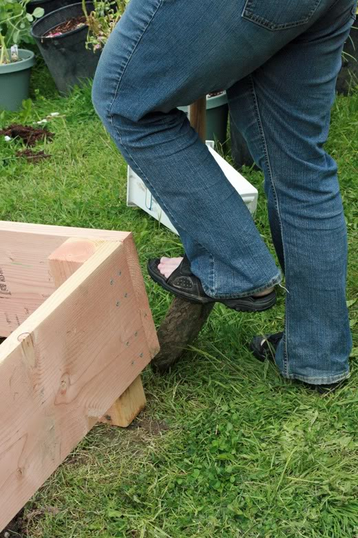 making raised garden beds - digging trough around bed