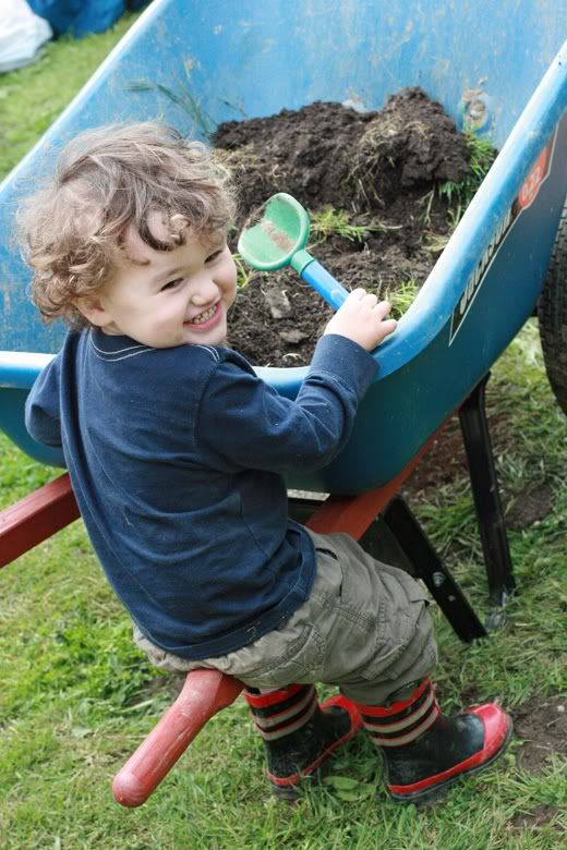 making raised garden beds - boy on wheelbarrow
