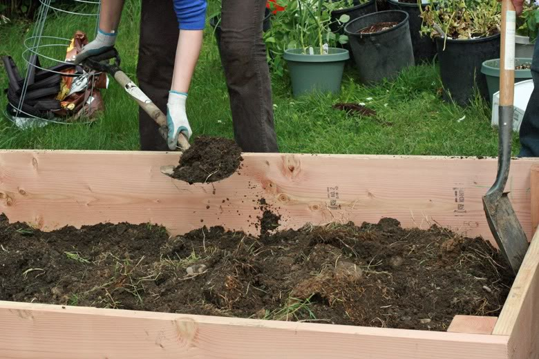 making raised garden beds - shoveling dirt and soil