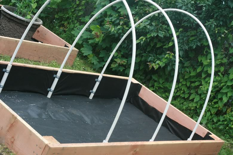 making raised garden beds - pvc hoops over finished bed