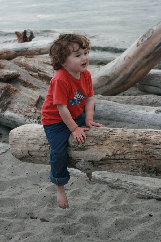 Boy on driftwood teeter-totter on the beach