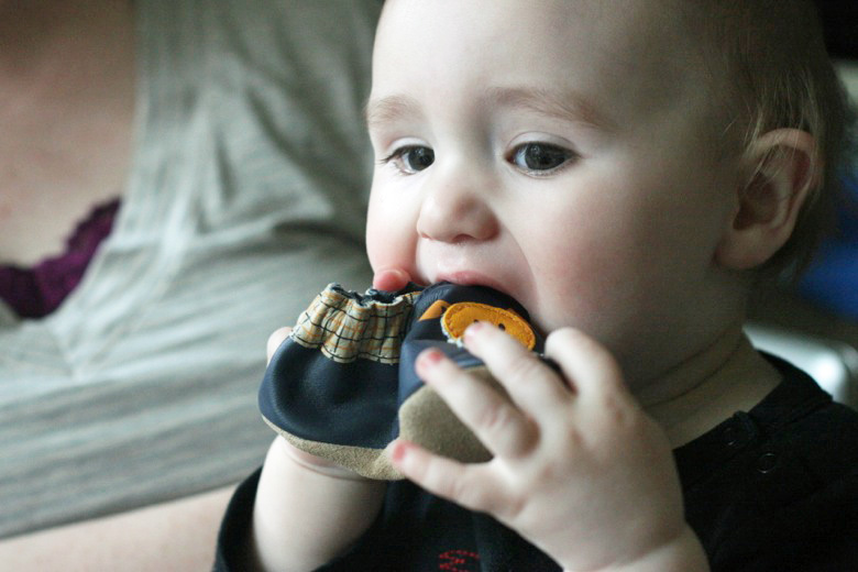 baby eating robeez shoe present at birthday