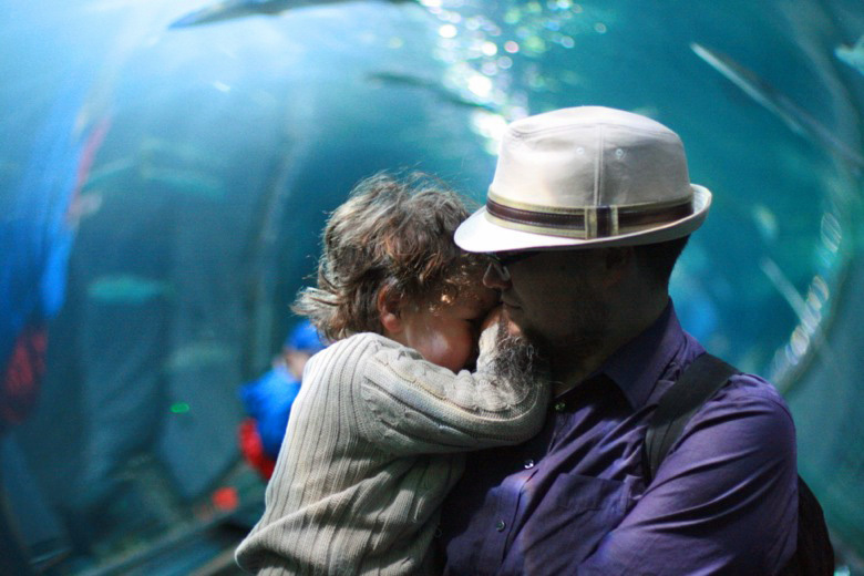 boy scared with dad at the aquarium of the bay — california road trip travel san francisco