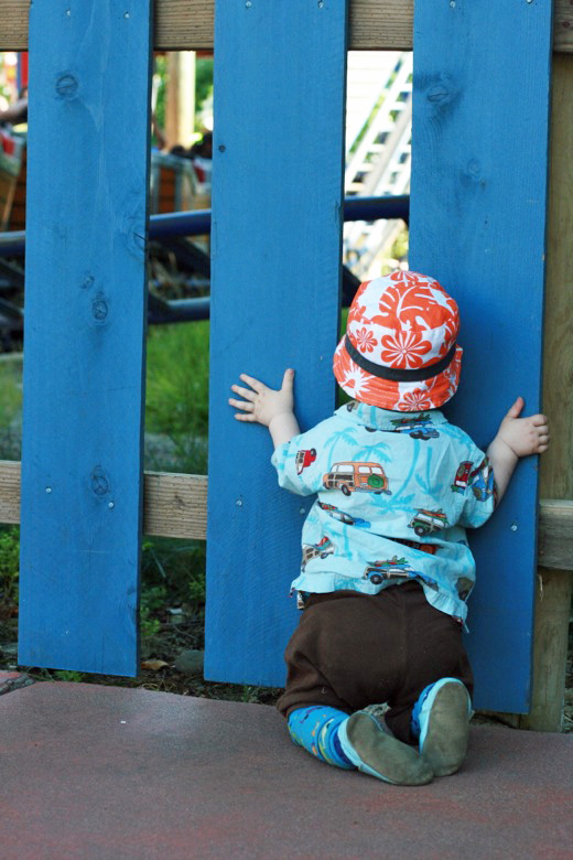 baby in amusement park peering looking through blue fence — Six Flags California