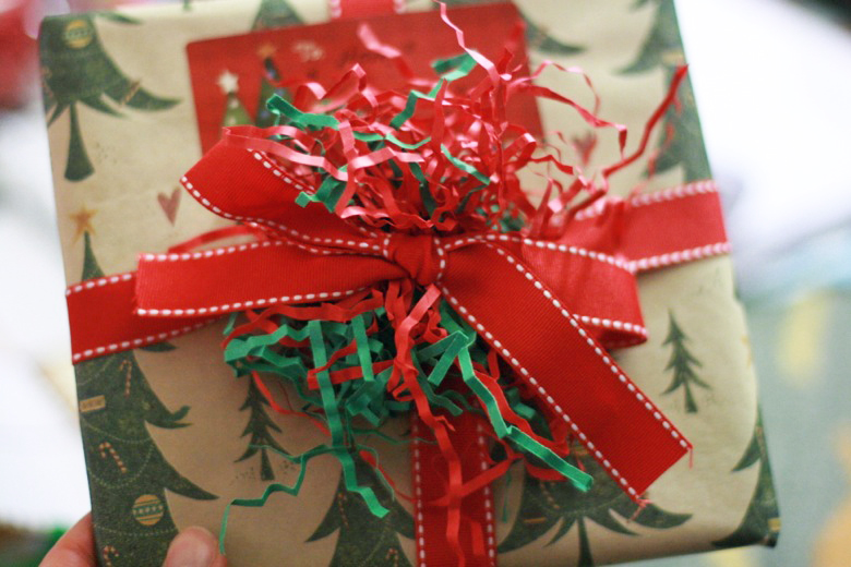wrapped present — holidays Christmas12