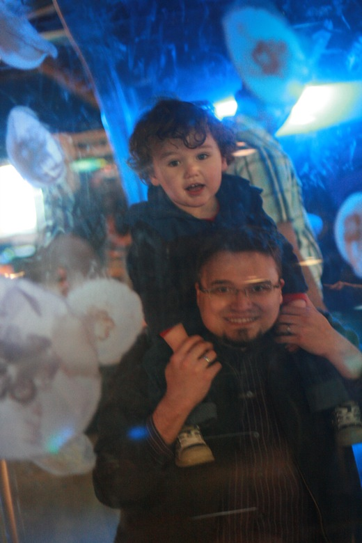 father and son through jellyfish tank Seattle Aquarium