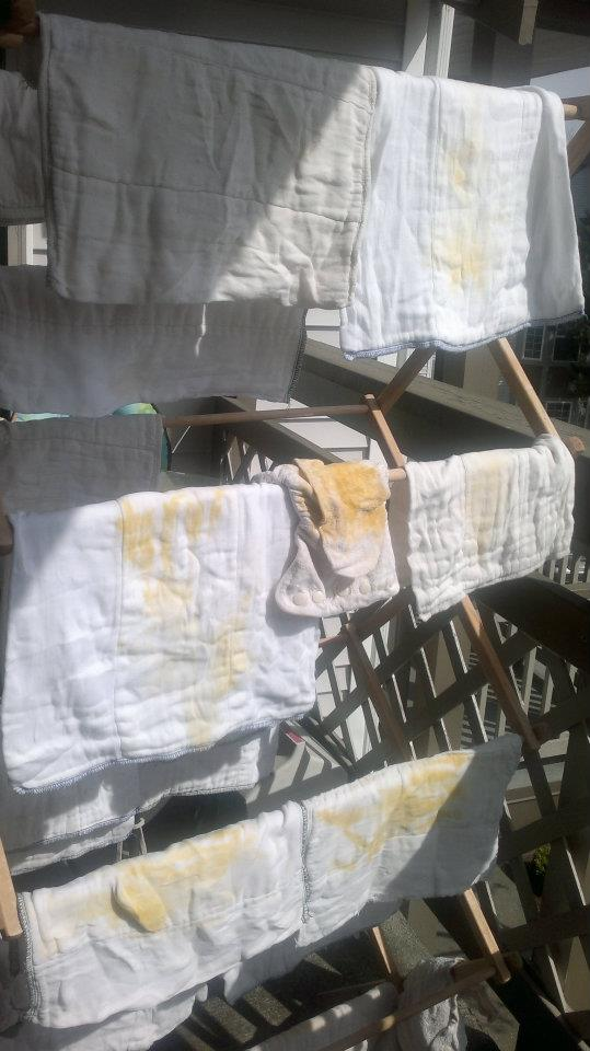 stained cloth diapers — bleaching in sun