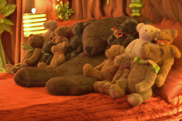 teddy bear suite — Christmas downtown Seattle meetup holidays