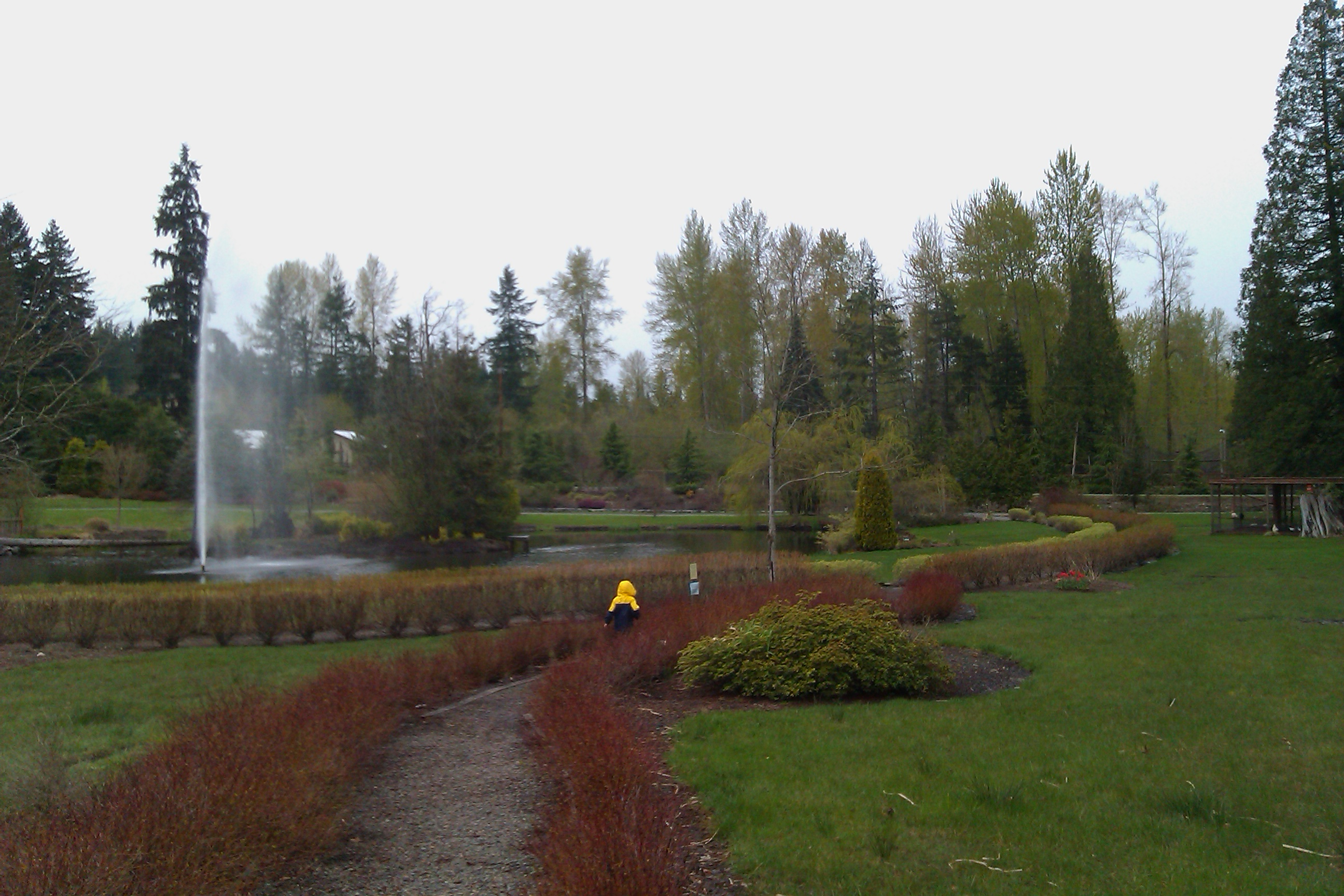 boy in rain jacket walking ahead on gravel path by pond
