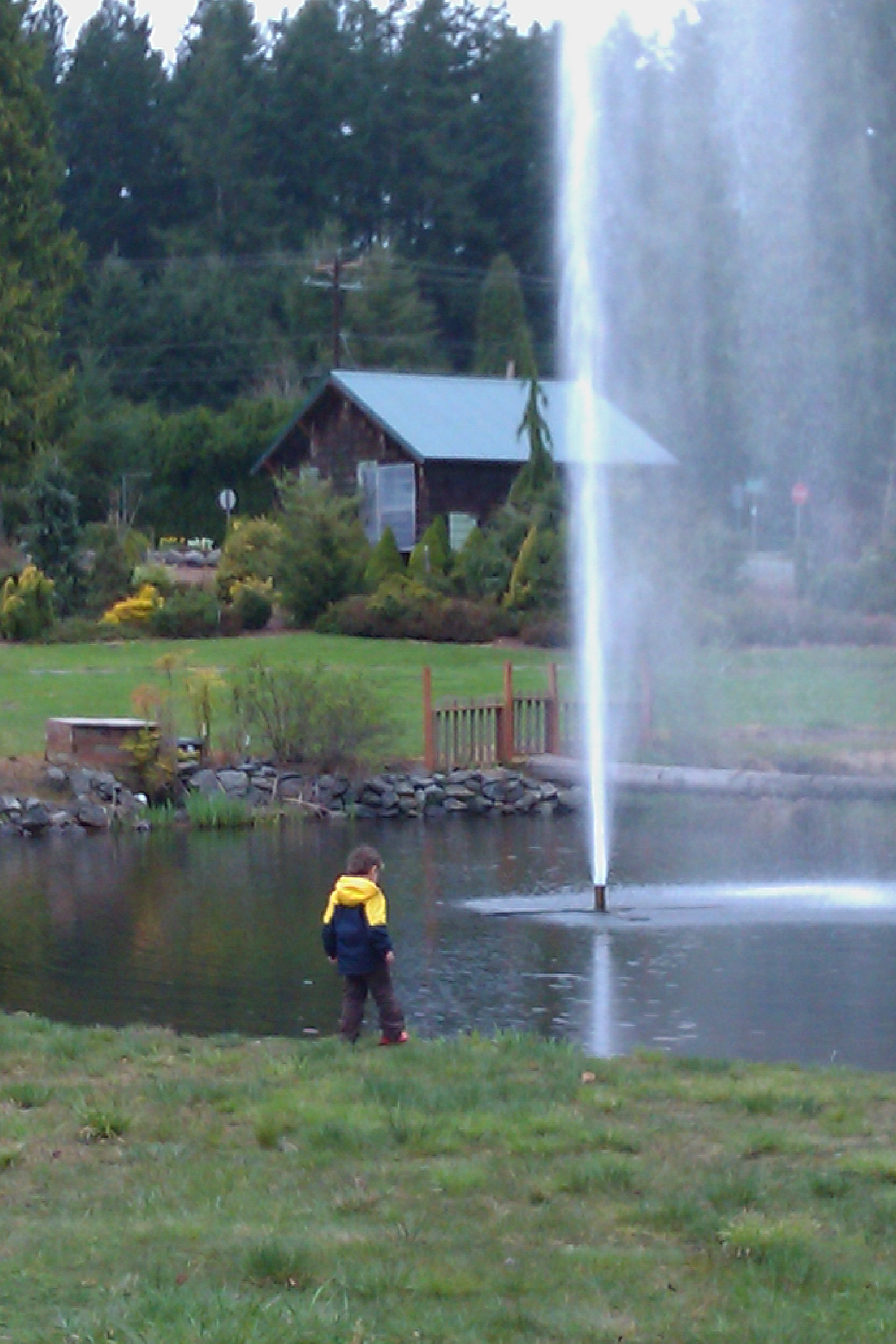 boy watching fountain on pond — flower world