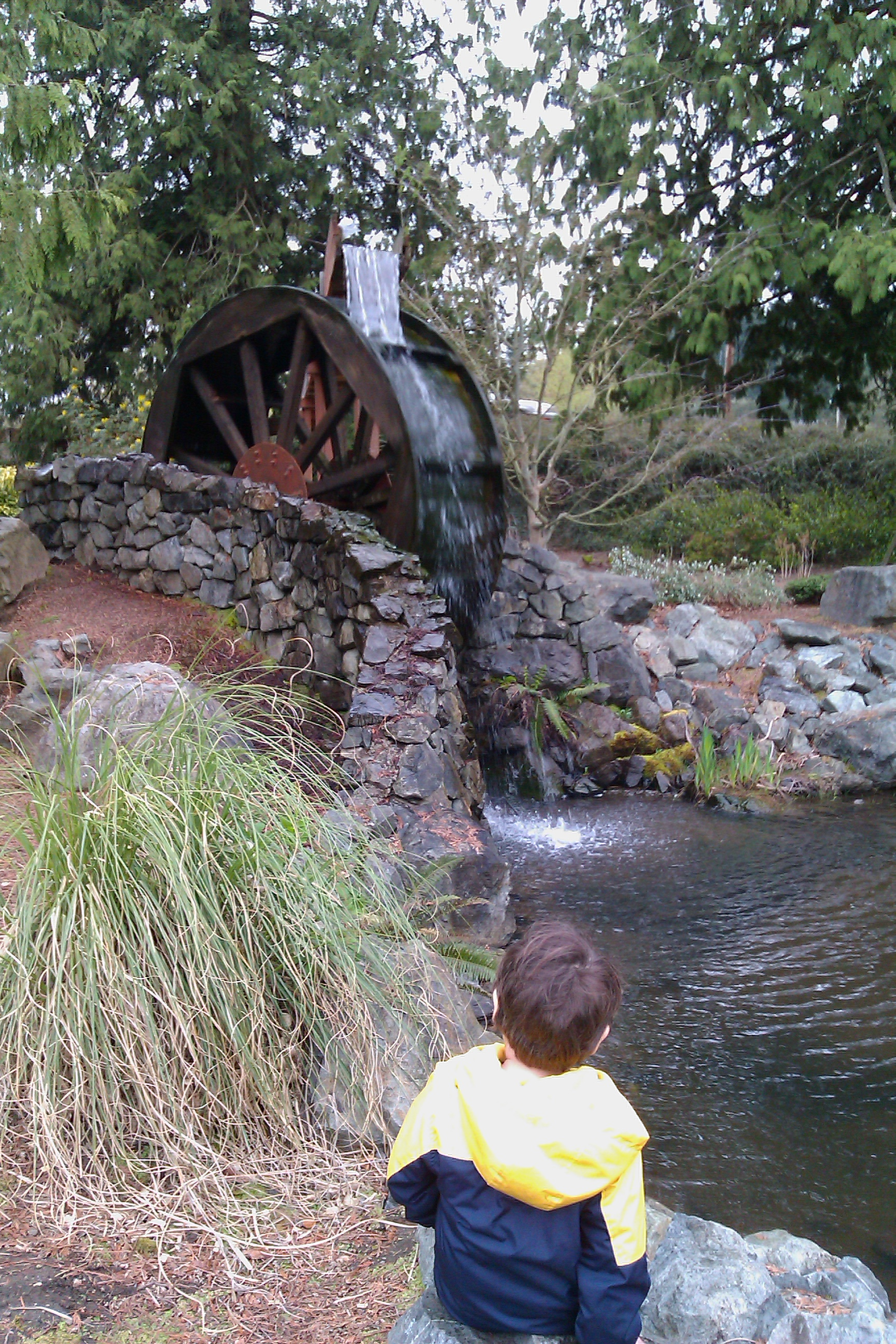 boy watching water wheel