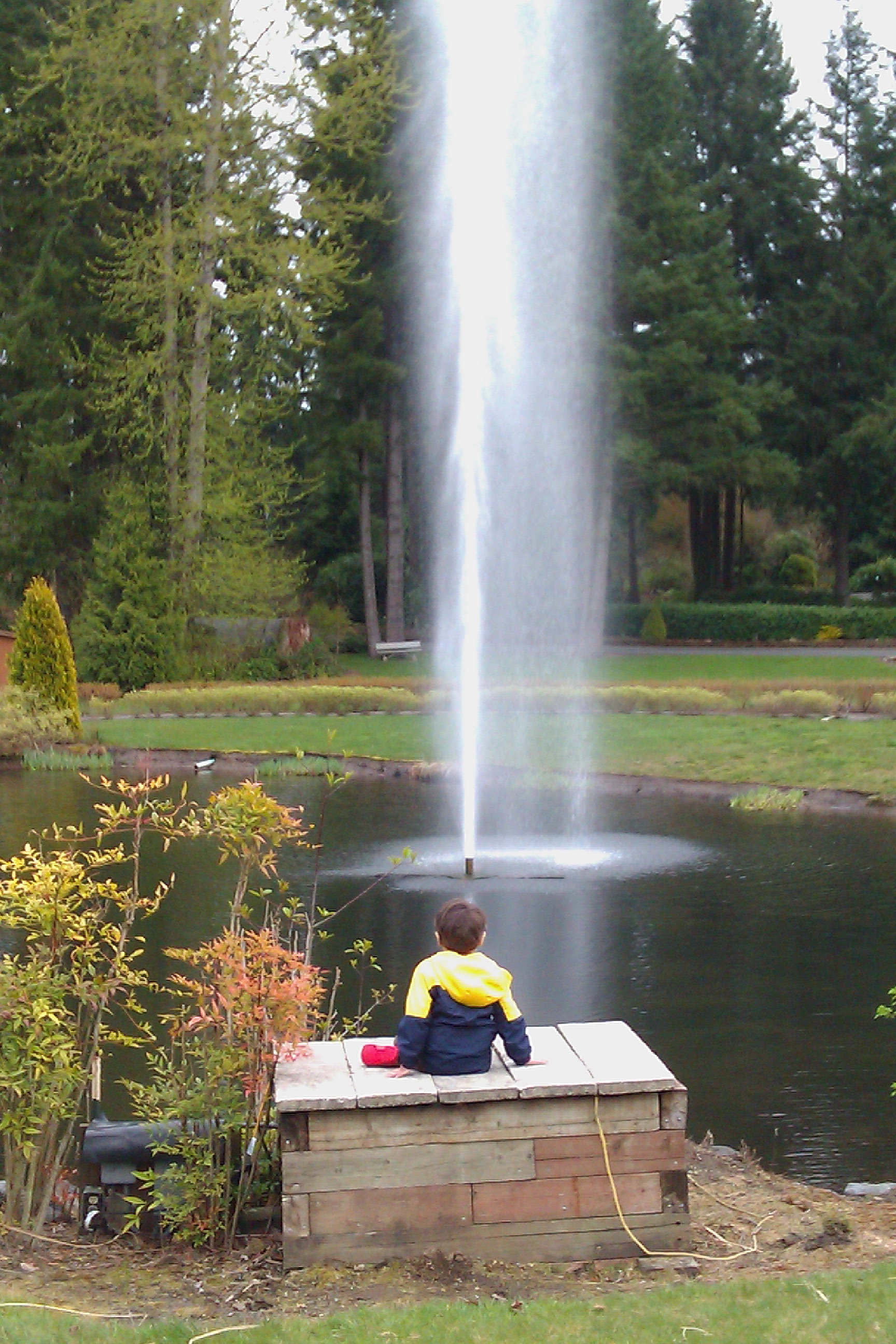 boy sitting and watching fountain on pond