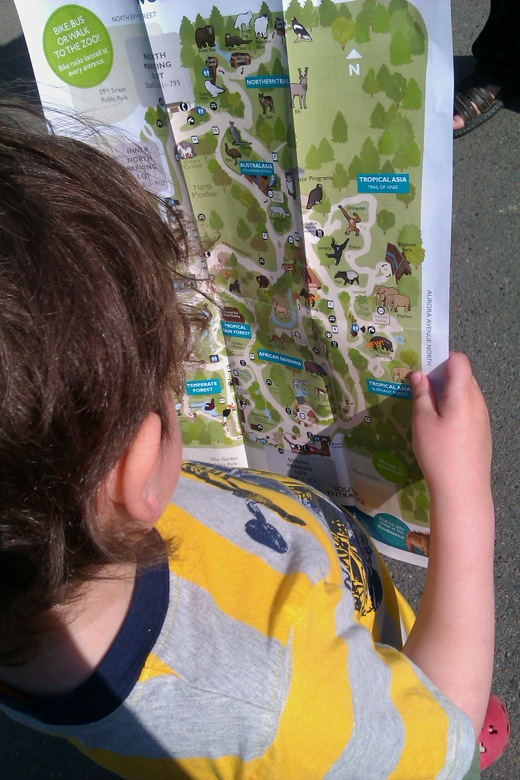 boy reading map at Woodland Park Zoo Seattle