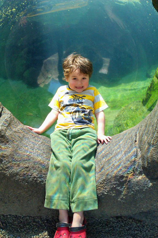 boy at Woodland Park Zoo Seattle