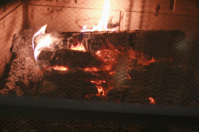 first fire of the season — Christmas 2011
