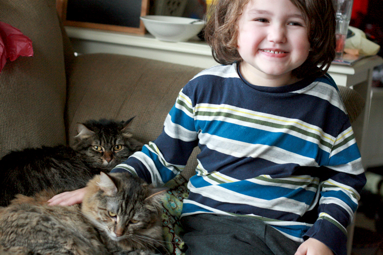 boy smiling with cats - valentine's day 2013