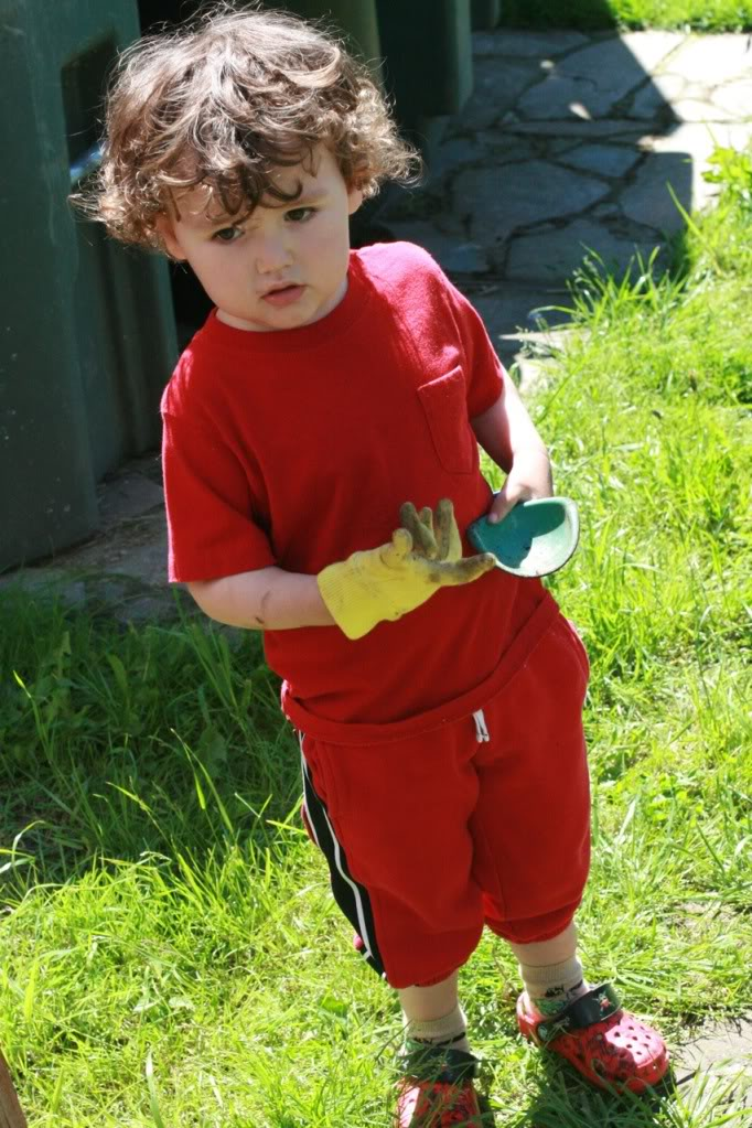 boy in garden glove with toy shovel