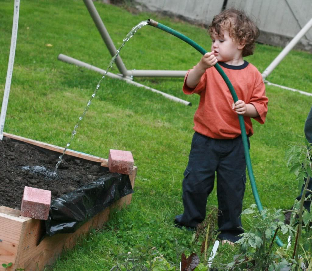 boy watering dirt with garden hose