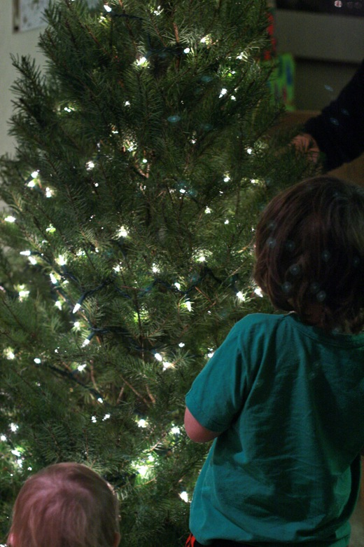boys watching the tree — christmas12 holidays mikko m5yo alrik a1yo a18mo