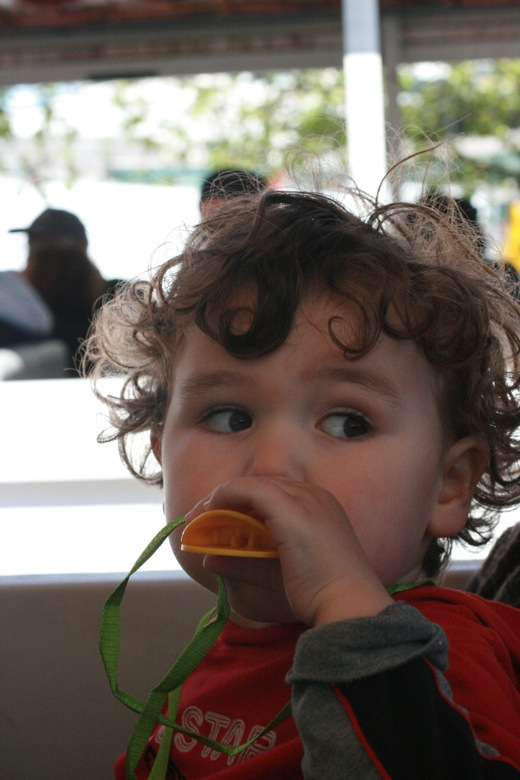 Boy with Duck Tour quacker