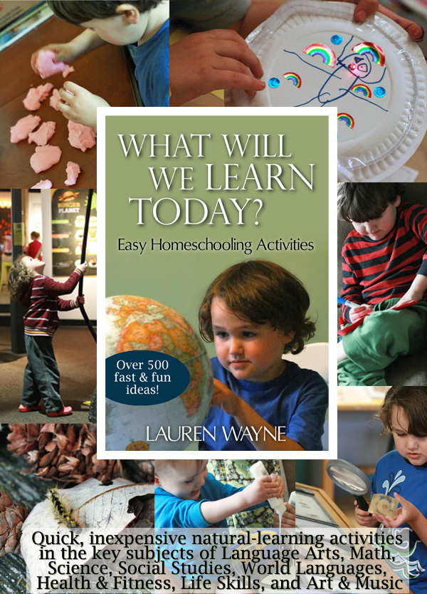 What Will We Learn Today? More than 550 Easy Homeschooling Activities == Lauren Wayne