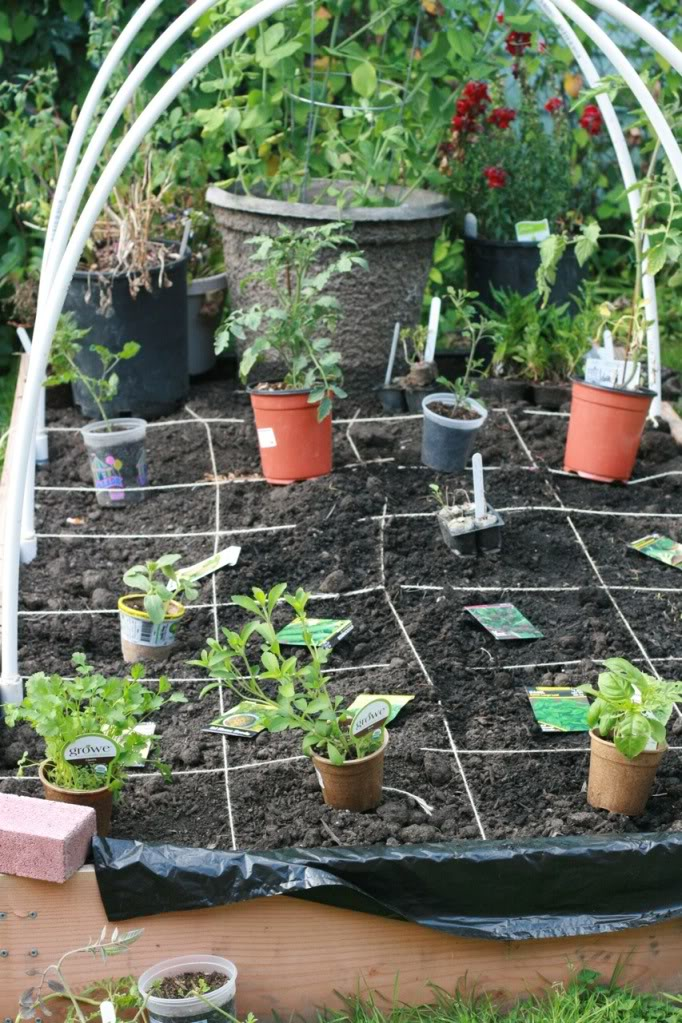 square foot gardening grid with twine