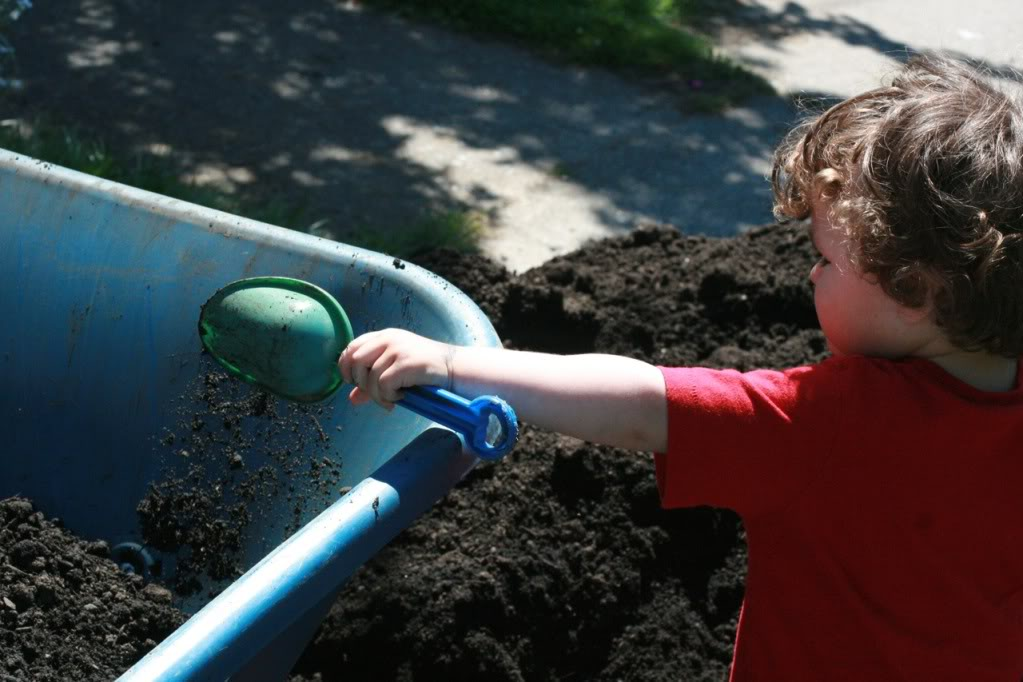 boy shoveling soil into wheelbarrow with trowel